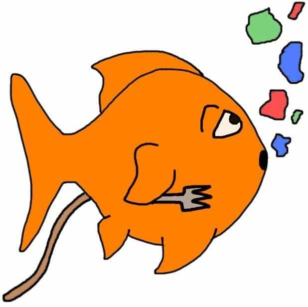 Goldfish care: don't overfeed your goldfish!