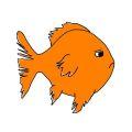 Goldfish fin rot