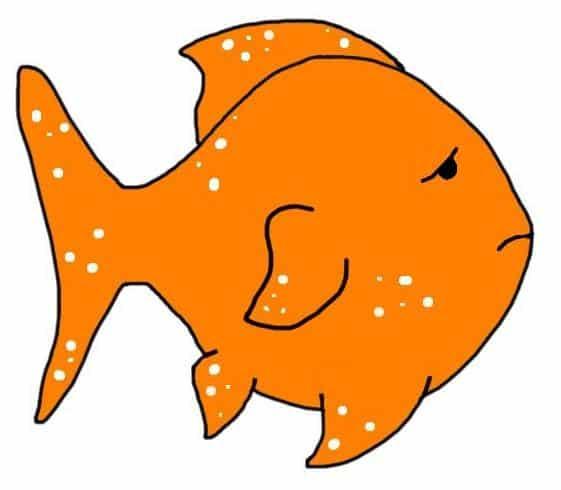 goldfish-white-spot-ich