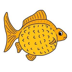 Goldfish dropsy
