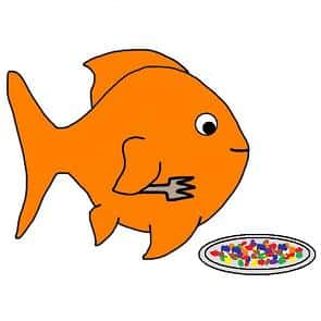 Can goldfish taste food?