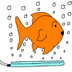 Goldfish air pump
