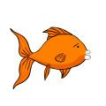 Goldfish cotton mouth