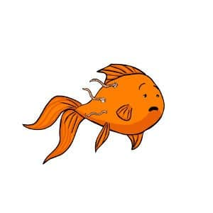 Goldfish flukes