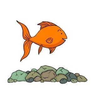 Goldfish tank pebbles