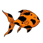 goldfish black smudge