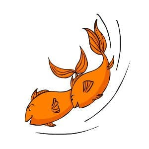 Goldfish chasing