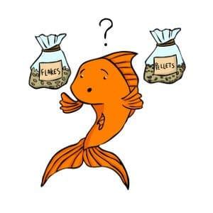 Flake food versus pellets for goldfish