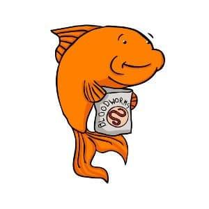 Treat your goldfish