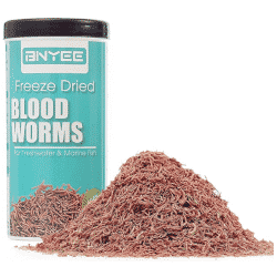 Freeze-dried bloodworms